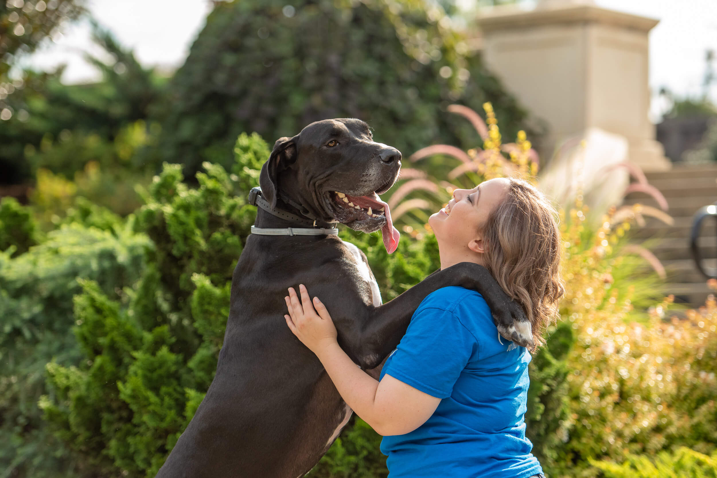 Large Black dog standing on back legs hugging a Charlotte dog trainer.